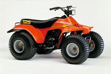 1982 SUZUKI LT125 ATV QUAD POSTER PRINT 24x36 HI RES 9MIL PAPER
