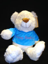 Brand New Soft stuffed cuddly Teddy Bear  30cm Happy Birthday (Removable top)