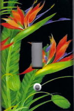 Bird Of Paradise On Black Home Wall Decor Light Switch Plate