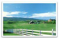 Postcard Sheep Grazing in Montgomery County - Blacksburg & Prices Fork VA J26