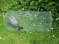 SINGLE CATCH WOOD PIGEON TREADLE TRAP WILL CATCH A  RANGE OF BIRDS  GREAT DEAL
