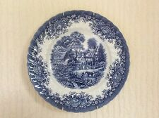 Blue and White Plate 9.75""