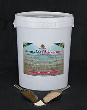 Horse & Pony Feed Supplement  EQUINE PLUS DE, SEAWEED & GARLIC Blend 10kg BKT