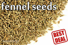 90g (3.17oz) FENNEL WHOLE SEED SEEDS COOKING SPICE FREE SHIPPING ANISE