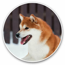 SHIBA Inu Nero-Mojo Animal Planet DOG Figura 387363