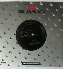 "DRAGON RIVER 7"" VINYL RECORD"