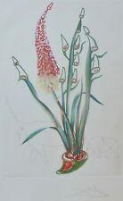 "SALVADOR DALI ""Rhinoceros Stock"" HAND SIGNED Surrealistic Flowers Etching"