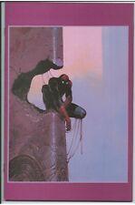 Amazing Spider-Man #800 Moebius Virgin Variant 1:100