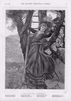 1876 - Antique Print FINE ART Mistletoe Gatherer Lady Ladder Tree    (116)
