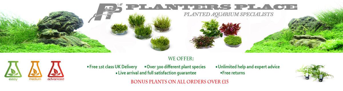 Planters Place Rare Aquarium Plants