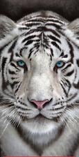 30x60 White Tiger Blue Eyes Velour Beach Towel