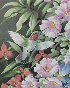 Matted Humming Bird Feeding Foil Art Print~Affordable Art~8x10~Animal