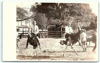 VTG Postcard Real Photo RPPC California Cawstons Ostrich Farm Racing Pasadena B1
