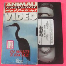 VHS film IN MOLTI E' FACILE Animali selvaggi HOBBY & WORK (F107) no dvd
