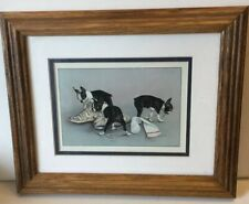 Boston Terrier Puppies Framed Print