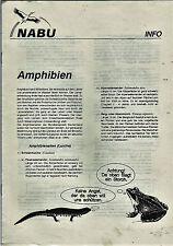 Amphibien Naturschutzbund der NABU Informiert Arten Schutzmaßnahmen Gefährdung