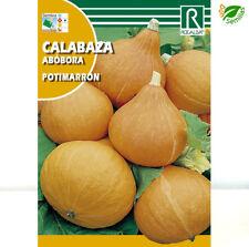 Calabaza Potimarron ( 3 gr / 15 semillas aprox)  seeds