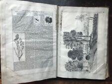 1900s Scrap Album, Sketches, Photographs, cuttings, etchings