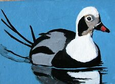 "A349  ""SALE""  ORIGINAL ACRYLIC  ACEO PAINTING BY LJH  ""OLDSQUAW""    DUCK"