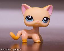 *Littlest Pet Shop* LPS #339 Orange Short Hair Cat Raceabout Ranch Authentic
