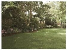 9 x 7 Foot Patio Background Photo Backdrop Screen Green Trees Garden Backyard