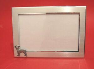 Border Terrier Motif 4 x 6 Photo Picture Frame Mum Dad Vet Kennels Gift NEW