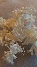 12pcs x 7cm white foam flower embellishments/stamen