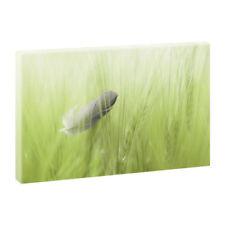 Deko-Bilder & -Drucke mit Kunstdruck-Motiv fürs Wohnzimmer ohne Angebotspaket