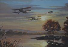 Fairey Swordfish RAF SECONDA GUERRA MONDIALE BIPLANO Aerosilurante elencati Acquerello