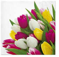 Springtime Tulips 12 Inch Oval Plates Spring Flowers Floral Party Decorations