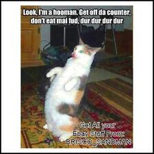 "Fridge Fun Refrigerator Magnet ""LOOK IM A HOOMAN"" Cat Meme Funny Mocking Parody"