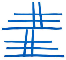 Warrior 350 Blaster 200  Nerf Bar Nets   Fit Alba Racing Tusk    Blue   A