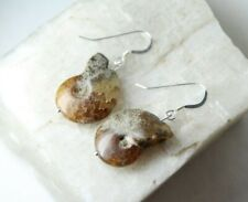 Ammonite Fossil Snail Gemstone Earrings .925 Sterling Silver Cephlapods Nautilus