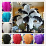 Wholesale 10-200pcs high quality natural ostrich feathers 15-60cm / 6-24inch
