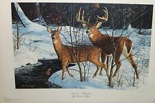 Bruce Miller Zone 2 Whitetail Print Limited Edition Minnesota Artist Signed