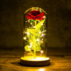 Girlfriend Eternal Rose LED Light Foil Flower Glass Wedding Bridesmaid G.AU