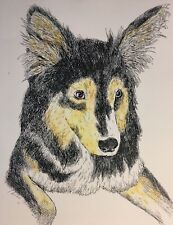 AUSTRALIAN SHEPHERD - Small, art reproduction, artist, ink, realism, dog