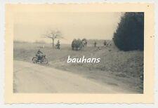 Foto Motorrad-Krad-Pferdegespann- Pz.Jg.Abt.230-169 Inf.Div. (p24)