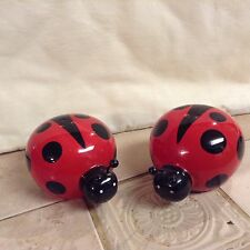 Cute Lady Bug Salt and Pepper Shakers