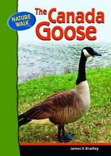 The Canada Goose (Nature Walk)-ExLibrary