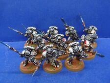 10 Mann Strike Squad der Grey Knights GUT BEMALT