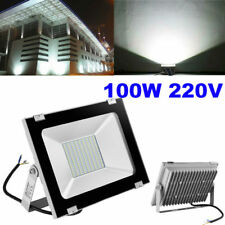100W LED Floodlight Outdoor Garden Landscape Wall Roof Fence Spot Lamp Bulb Cool