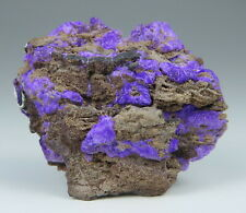 Gorgeous SUGILITE specimen * N'Chwaning Mines * South Africa