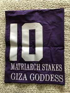 GIZA GODDESS GRADE 1 MATRIARCH SADDLE CLOTH DEL MAR
