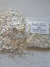 Nail Art Mixed Glitter ( Mirror Mirror ) 10g Bag Chunky Silver