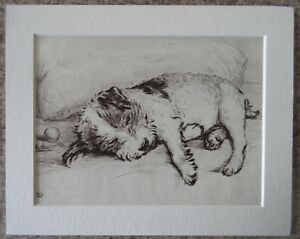 "Lucy Dawson (Mac) Played Out - 8""x10"" Mounted Art Print - Dog Sketch Picture"
