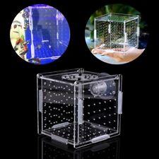 Acrylic Fish Breeding Isolation Box Aquarium Breeder Hatchery Incubator
