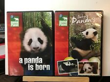 A Panda Is Born & Baby Panda's First Year ... Animal Planet Lot (DVD, 2005, 2007
