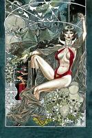 Vampirella #6  March Virgin Variant Dynamite Comic Cover 1:40 Book NM