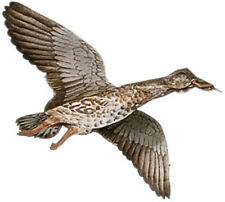 Jackite Mallard Hen Duck Decoy Kite / Windsock